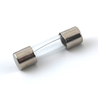 FUSE-5X20MM 125MA GLASS